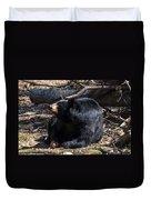 Black Bear Guarding Food Duvet Cover