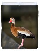 Black-bellied Whistling Duck Duvet Cover