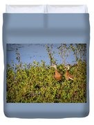 Black-bellied Whistling Ducks Duvet Cover