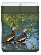 Black-bellied Whistling Ducks Wading Duvet Cover