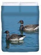 Black Brant Pair Swimming Duvet Cover