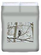 Black Capped Chickadee - Poecile Atricapillus Duvet Cover