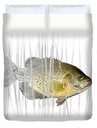 Black Crappie Pan Fish In The Reeds Duvet Cover