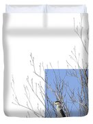 Black-crowned Night-heron Duvet Cover