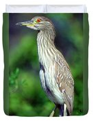 Black-crowned Night Heron Juvenile Duvet Cover