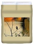 Black-crowned Night Heron Duvet Cover