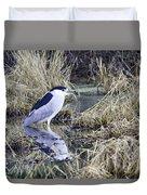 Black Crowned Night Heron Duvet Cover