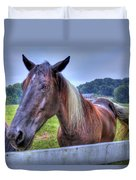 Black Horse At A Fence Duvet Cover