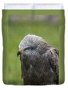 Black Kite 1 Duvet Cover