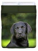 Black Labrador Puppy Duvet Cover