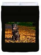 Black Labrador Retriever In Autumn Forest Duvet Cover