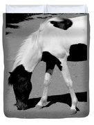 Black N White Horse Duvet Cover