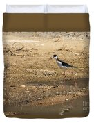 Black-necked Stilt Duvet Cover by Robert Bales