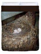 Black Phoebe Nest With Eggs Duvet Cover