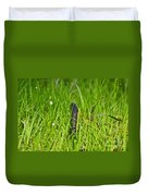 Black Racer Back Duvet Cover by Al Powell Photography USA