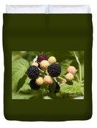 Black Raspberries Duvet Cover