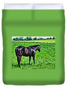 Black Stallion In Pasture Duvet Cover
