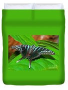 Black Swordtail Butterfly Duvet Cover