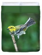 Black-throated Green Warbler, Female Duvet Cover