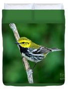 Black-throated Green Warbler, Male Duvet Cover