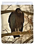 Black Vulture 1 Duvet Cover