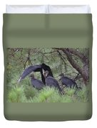 Black Vultures II Duvet Cover