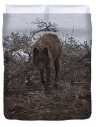 Black Wolf   #1678 Duvet Cover