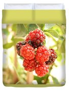 Blackberries Ripening Duvet Cover