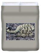 Blacktailed Rattlesnake Duvet Cover