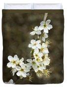Blackthorn Or Sloe Blossom  Prunus Spinosa Duvet Cover