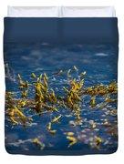 Bladder Seaweed, Fucus Vesiculosus Duvet Cover