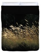 Blades Of Grass In The Sunlight Duvet Cover by Jim Holmes