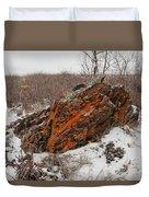 Bleak Winter Arctic Steppe Orange Lichens Rock Duvet Cover