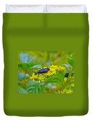 Blister Beetle On Yellow Autumn Flowers Duvet Cover