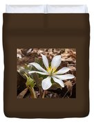 Blood Root 1 Duvet Cover