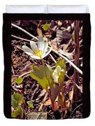 Bloodroot Reaching For The Spring Sun Duvet Cover