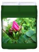 Bloom Wild Rose Bud Duvet Cover