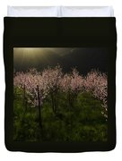 Blooming Almond Trees Duvet Cover