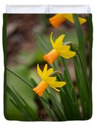 Blooming Daffodils Duvet Cover