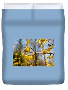 Blooming Forsythia Duvet Cover