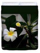 Blooming Frangipani Flower Alongside Bud Duvet Cover