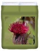 Blooming Spear Thistle Duvet Cover