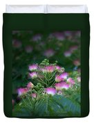 Blooms Of The Mimosa Tree Duvet Cover