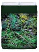 Blow Down Glacier National Park  Duvet Cover