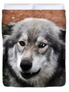 Blue And Brown Eyed Husky Duvet Cover