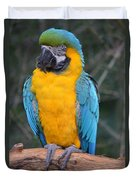 Blue And Gold Macaw Duvet Cover