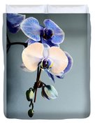 Blue And White Orchids Duvet Cover