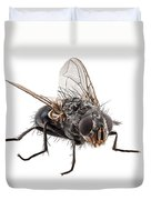 Blue Bottle Fly Species Calliphora Vomitoria Duvet Cover