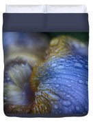 Blue Danube  Duvet Cover