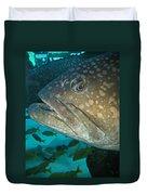 Blue-eyed Grouper Fish Duvet Cover
